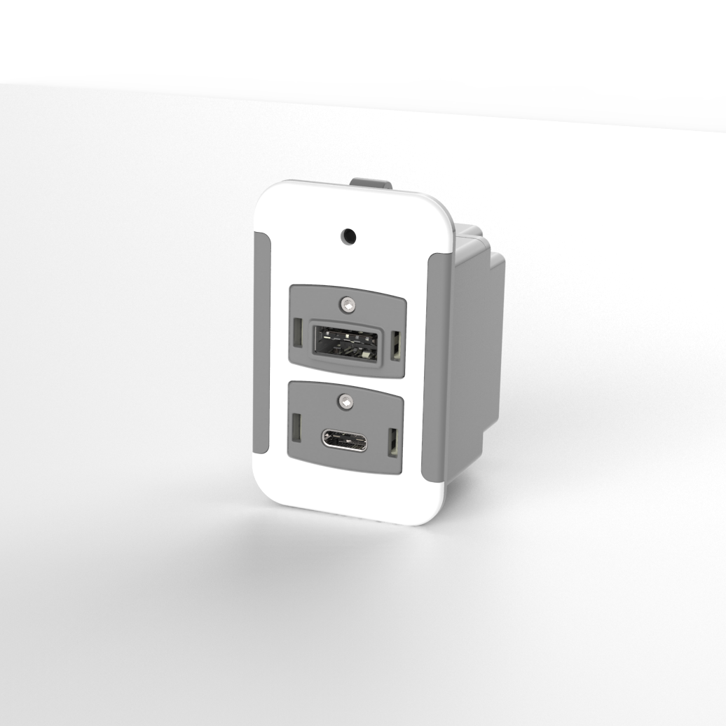USB-A and USB-C Combination Power Module 2030 | Grey and White | IFPL